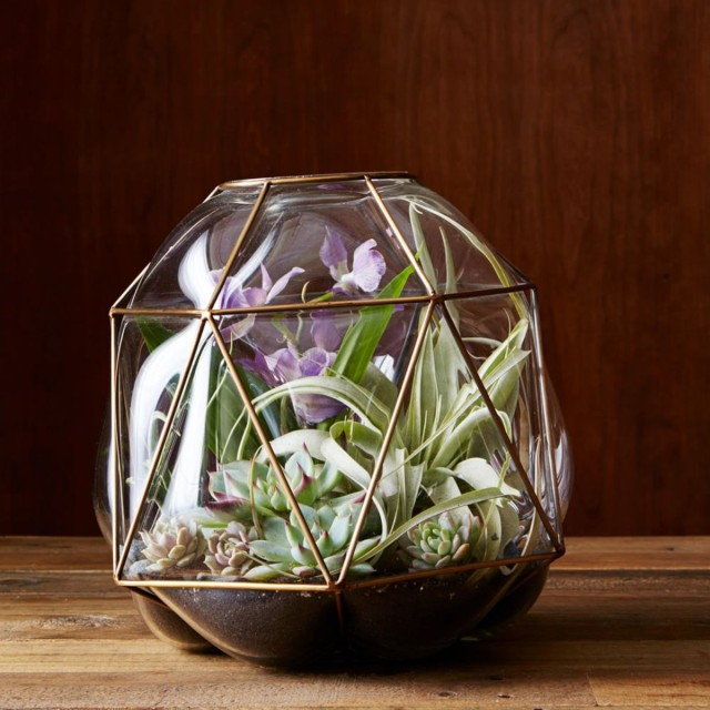 WE-brass-cage-terrariums-d2947-alt1